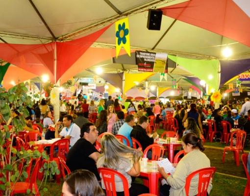 Aproximadamente 8 mil pessoas participaram da Festança no Parque 2015