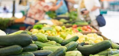 ORGÂNICOS - Número de produtores no Estado cresce 16,9%, aponta Secretaria