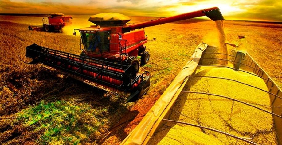 A safra de grãos 2016/2017 pode chegar ao recorde de 234,3 milhões de toneladas, com aumento de 25,6% (47,7 milhões de toneladas) em relação à safra passada