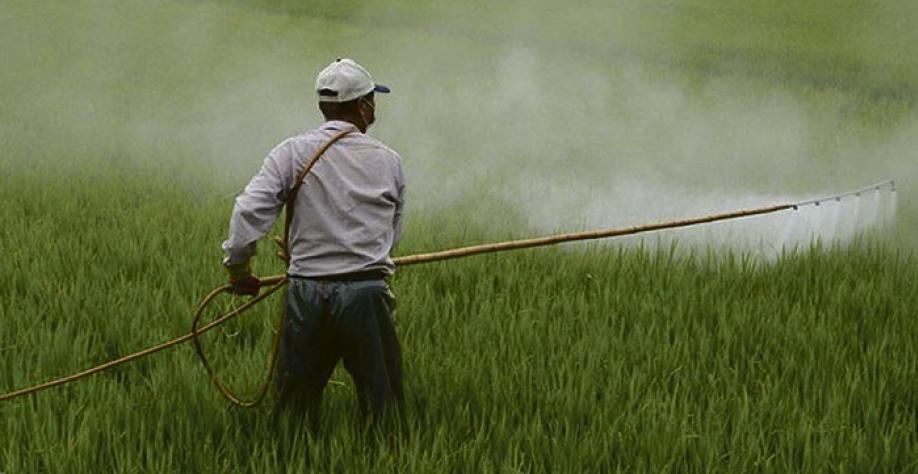 Anvisa alega que ingrediente ativo traz riscos para saúde humana