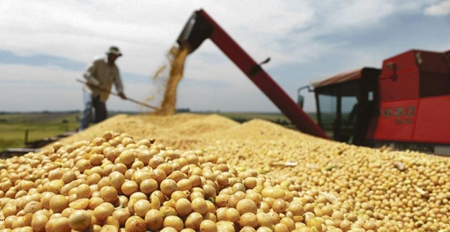 Nos Estados Unidos, mercado de grãos já é online