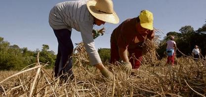 AGRICULTOR - Aposentadoria rural não será contemplada na reforma