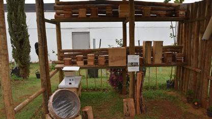 """Você conhece o Projeto """"Minha Colmeia, Nossa Vida - As abelhas e a biodiversidade""""?"""