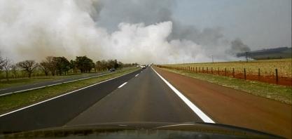INCÊNDIO - Fogo destrói vegetação da Fazenda Experimental de Sertãozinho