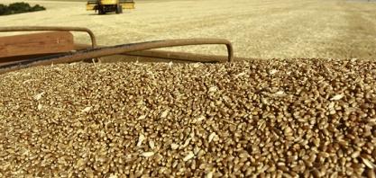 AGRICULTURA - Brasil poderá colher até 238 milhões de toneladas de grãos na safra 2018/19