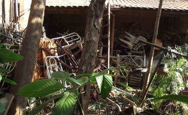 Temporada de chuvas alerta para reforço na prevenção ao mosquito da dengue