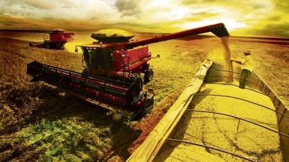 Aumento da produção de etanol de milho deve baratear combustíveis, concluem senadores