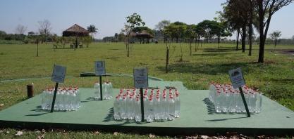 Escola de Educação Ambiental de Sertãozinho é instalação modelo de sustentabilidade