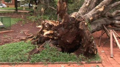 Chuva forte provoca estragos em praças de Sertãozinho