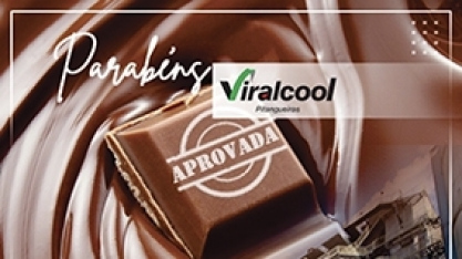 Processo de auditoria é sucesso na Viralcool