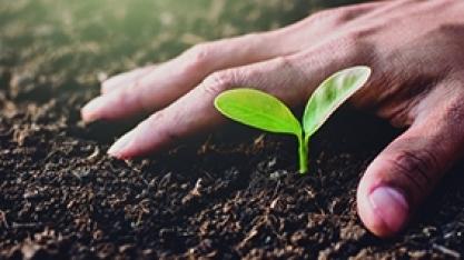 Empresários e produtores estão procurando mais soluções ambientais